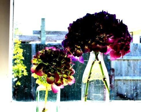 flowers in glass bottles