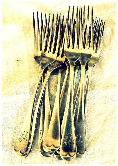 forks 2013