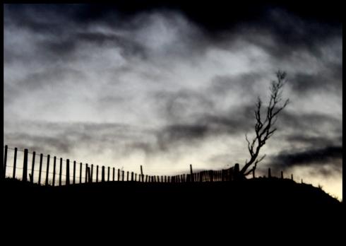 dusk cemetery