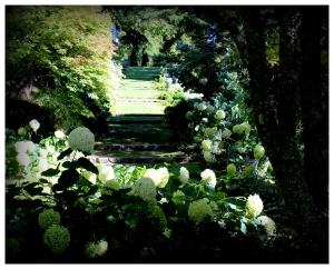 garden path Tupare