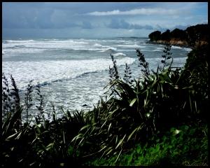Coastal walk August 2014