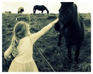 Sacha and horses